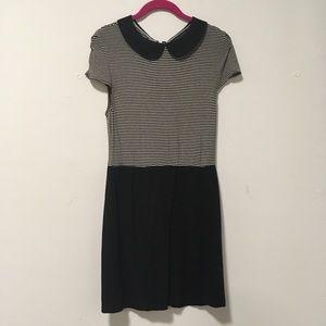 Alice White Black White Collar Work Dress L